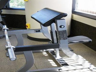 Seated Arm Curl Machine