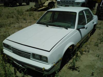 1987 Cavalier