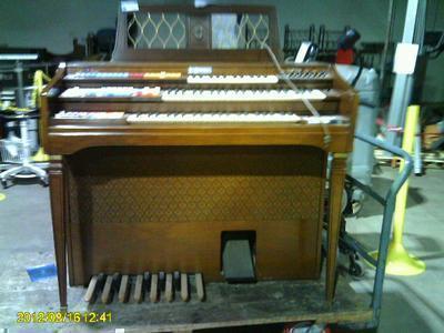 Wurl Organ