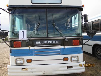 1995 Bluebird
