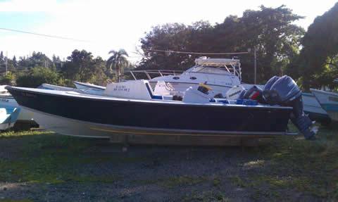 spiderboat